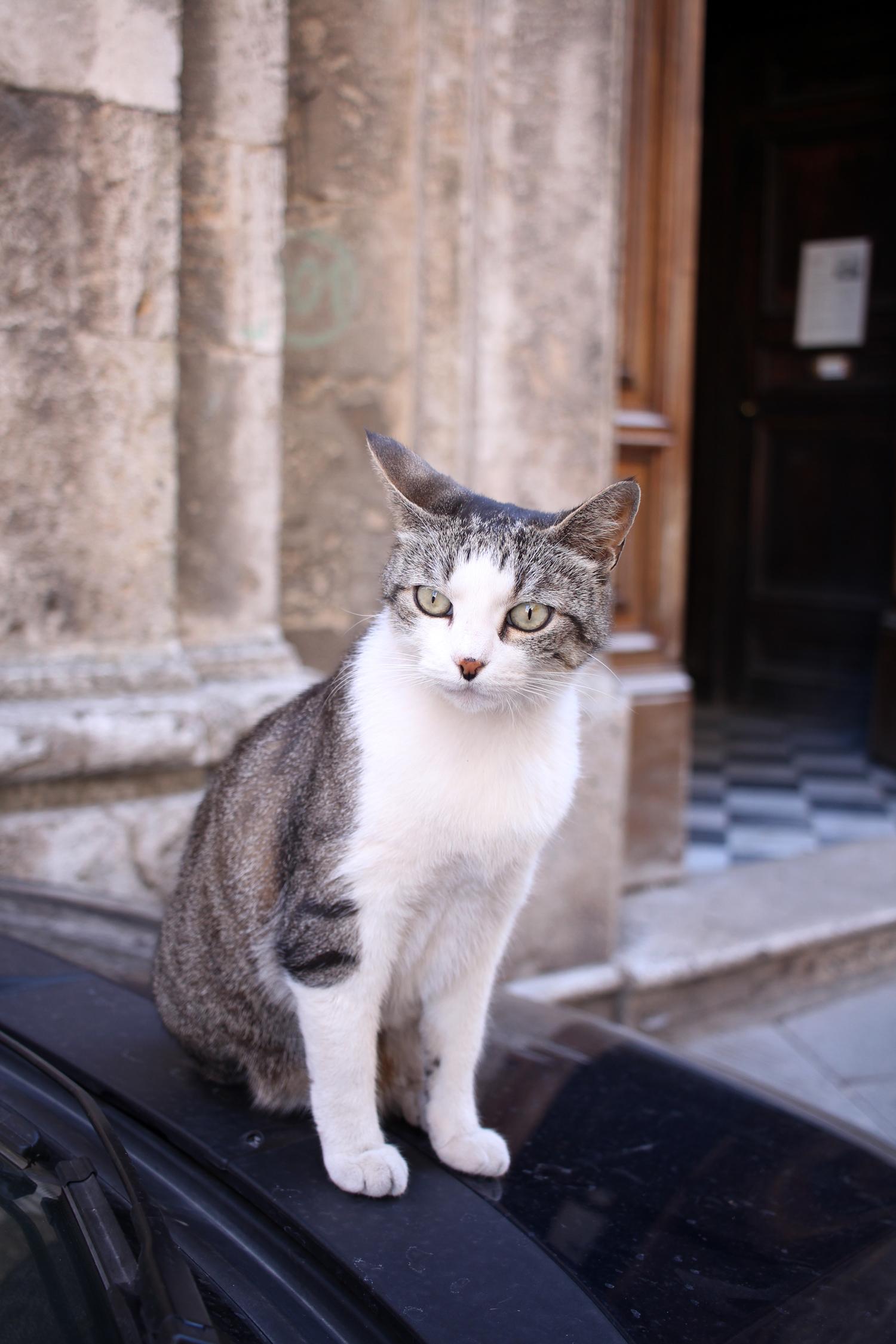 tuscany-italy-montepulciano-travel-blogger-11