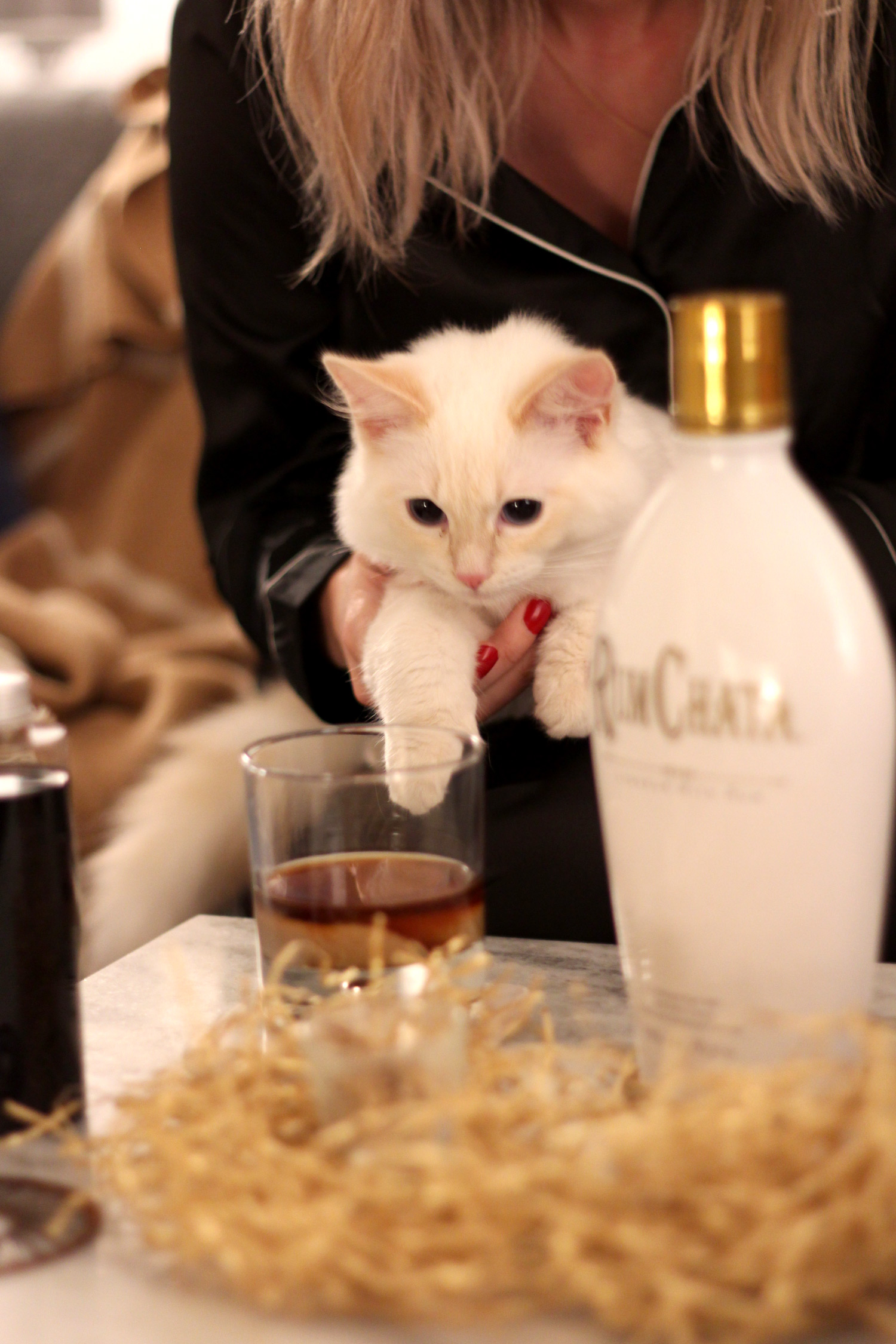 rum-chata-post-girls-night-in-lifestyle-cocktails-1