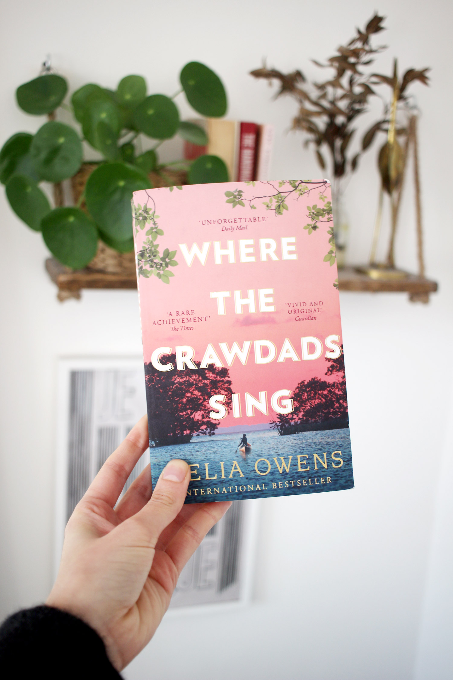 where-the-crawdads-sing-review
